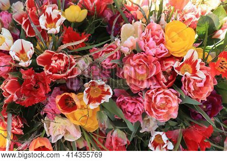 Colorful Spring Bouquet With Different Sorts Of Tulips In Various Bright Colors