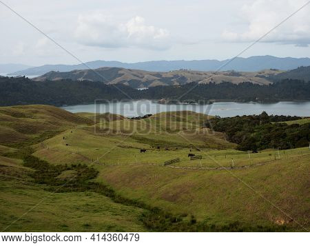 Panorama View Of Green Grass Rolling Hills Of Coromandel Peninsula Islands Bay From Manaia Saddle Lo