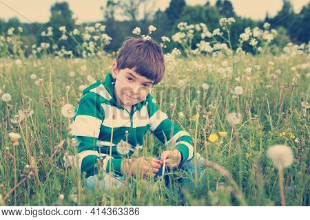 7 Years Old Child Sitting On The Field With Dandelions In Summer