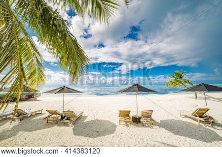 Beautiful Tropical Beach Banner. White Sand And Coco Palms Travel Tourism Wide Panorama, Chairs With