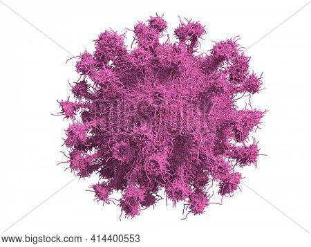 3D medical illustration of Virus, Isolated  Virus on White 3D rendered