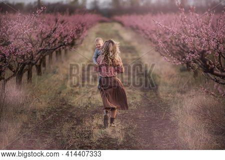A Young Mother Holds The Hand Of Her Little Son, Play, Run Together In The Pink Blossoming Peach Gar
