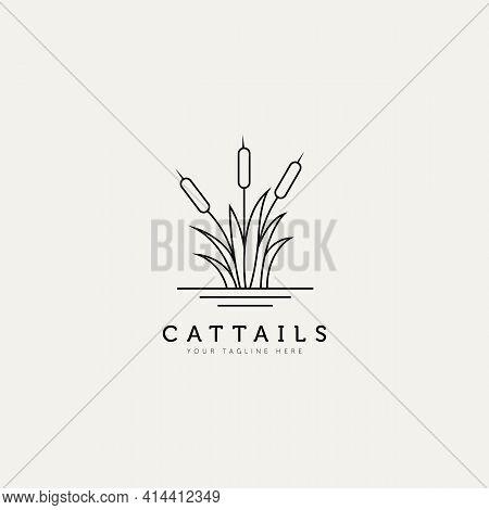 Cattail Plant Outline Minimalist Logo Design Illustration Design Template. Simple Modern Logo Concep