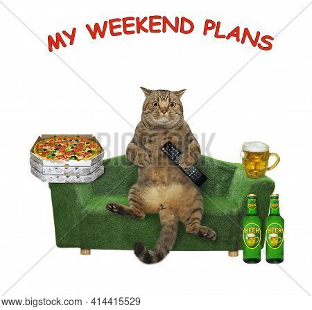 A Beige Cat With Beer And Pizza Relaxes On A Green. My Weekend Plans. White Background. Isolated.