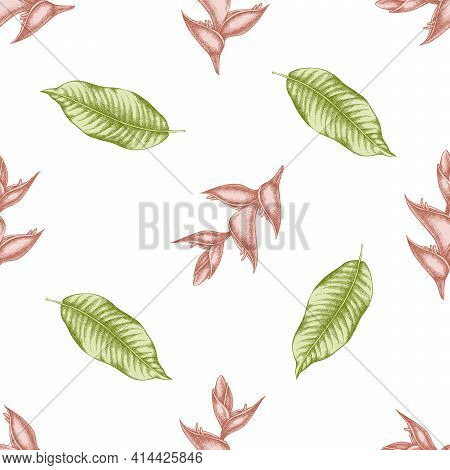 Seamless Pattern With Hand Drawn Pastel Heliconia Stock Illustration