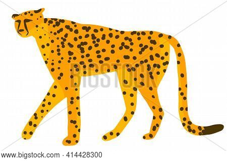 Cute Cheetah, Leopard Or Jaguar Cartoon Character Jungle Tropical Animal. Vector Illustration Isolat