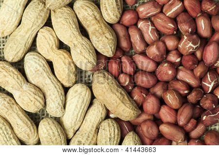 Closeup Peanuts On Burlap