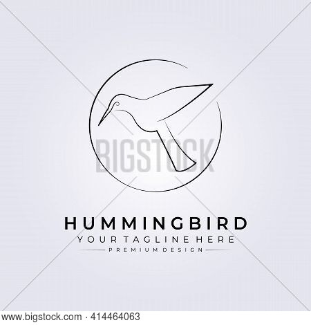 Colibri Bird, Hummingbird Line Art Logo, Simple Animal Vector Illustration Design