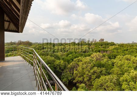 Beautiful Lanscape Of Mangrove Forest With River View.