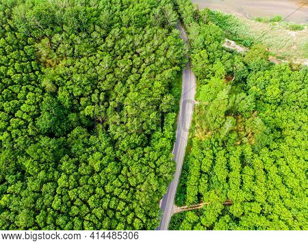 Aerial View Of A Asphalt Road In The Middle Of The Tropical Green Forest