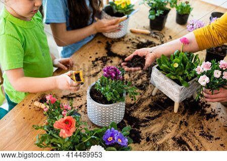Educational Hobbies, Development Of Family With Children