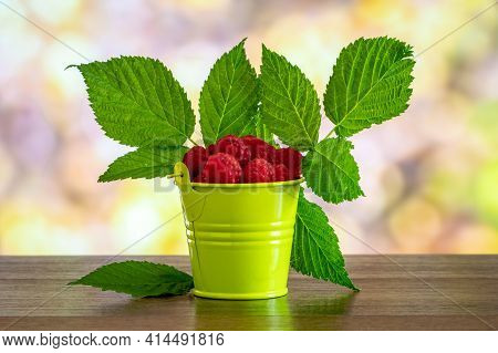 Red Raspberries And Green Leaves In A Decorative Bucket. Raspberry Harvest. Growing And Selling Rasp