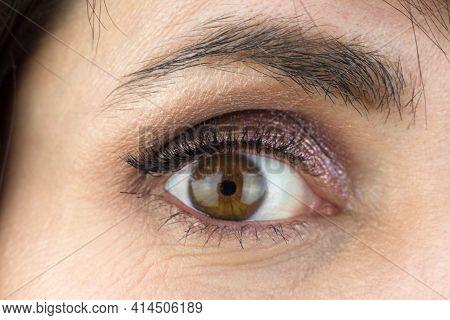 Female Eye With Lush Eyelashes And Makeup Eyelids, Close-up.