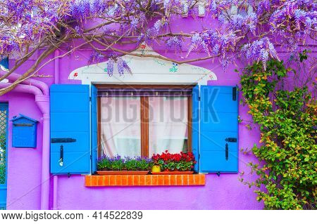 Window And Violet Flowers On The Violet Painted Facade Of The House. Colorful Architecture In Burano