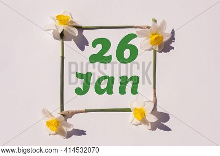 January 26th. Day Of 26 Month, Calendar Date. Frame From Flowers Of A Narcissus On A Light Backgroun