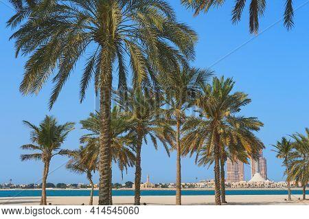 Wonderful Beach With Dreamlike Palm Trees And View To Blurred City Skyline In Abu Dhabi, United Arab