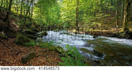 Mountain Stream Runs Through Forest. Spring Nature Scenery On A Sunny Day. Rapid Water Flows Among T