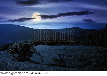 Green Grass On The Meadow In Mountains At Night. Summer Carpathian Countryside In Full Moon Light. R