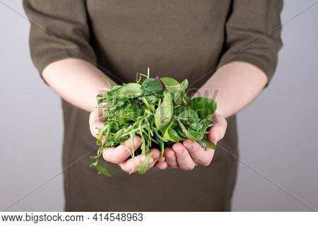 Female Hands Holding A Bunch Of Leafy Vegetables On A Green Background, Vegetarian Food, Healthy Eat