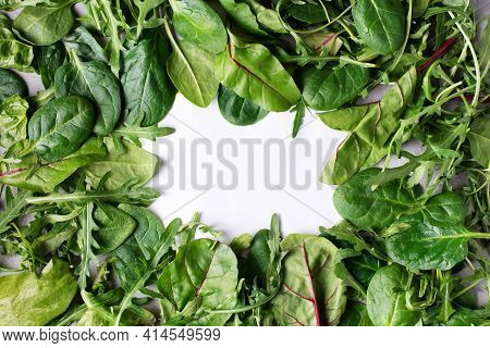 Leafy Vegetable Border: Spinach, Beet, Arugula, Healthy Eating Close Up Copy Space