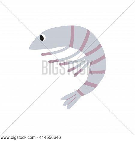 Cute underwater sea and ocean inhabitant, a grey shrimp character. Cartoon hand-drawn isolated illustration.