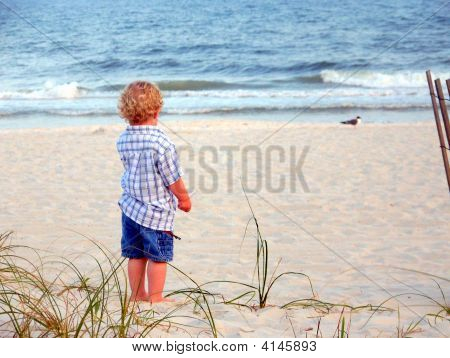 Little Boy Looks At Gulf Of Mexico