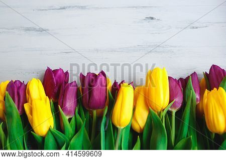 Yellow And Purple Tulips On A Gray Wooden Background. Flat Lay