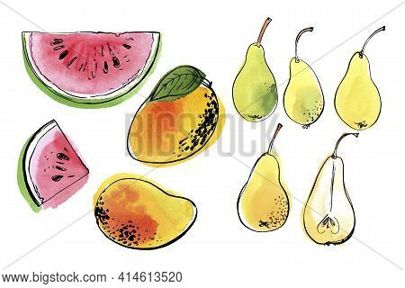 Vector Light Fruit Line Watercolor On White Background. Watermelon, Pear, Mango