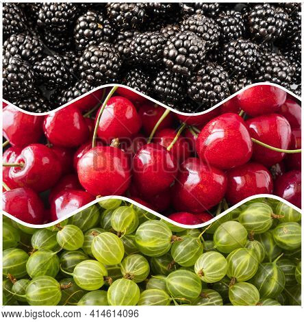 Fresh Berry Background. Top View. Blackberries, Cherries And Gooseberries In The Shape Of A Circle.
