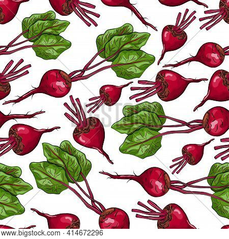 Beetroot Vector Seamless Pattern On A White Background For Packing, Wrapping, Labels And Backdrop. V