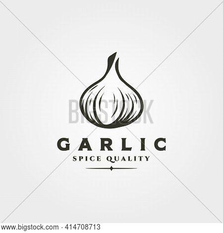 Garlic Onion Object Logo Vector Symbol Illustration Design, Garlic Spice And Herb Isolated Design