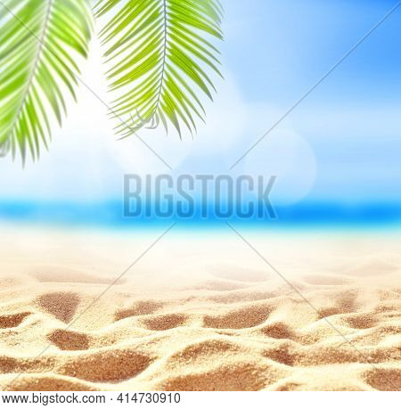 Palm Branch On The Sandy Beach. Summer Time.