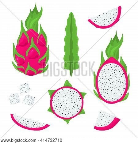Cartoon Color Whole Pitaya And Half Set. Vector
