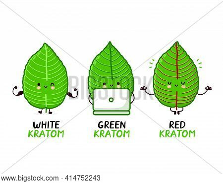Red, Green, White Kratom Strains. Cute Funny Kratom Leaf Character Set Collection. Vector Flat Line