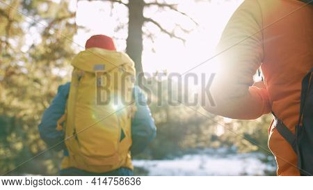 Teamwork. A Group Of Hikers Tourists Walk Through The Forest With Backpacks. Team Unity Travel Toget