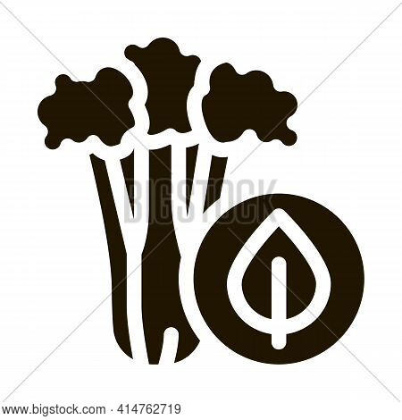 Celery Plant Glyph Icon Vector. Elery Plant Sign. Isolated Symbol Illustration