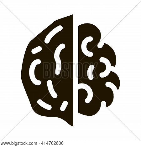 Walnut Nut Glyph Icon Vector. Walnut Nut Sign. Isolated Symbol Illustration