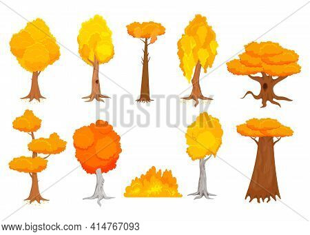 Cartoon Colorful Autumn Trees Vector Illustrations Set. Collection Of Yellow And Orange Fall Trees A