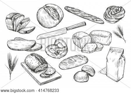 Hand Drawn Sketches Of Different Bread. White And Black Isolated Illustrations Of French Baguette, P