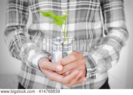 Money Growth. Black White Hand Farmer Holding Dollars Bank Note With Small Tree. Planing Earn Money