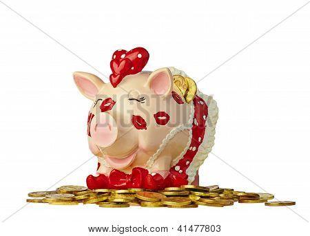 Amusing Piggy Bank With Golden Coin