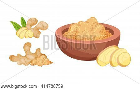 Fresh Ginger Rhizome As Fragrant Kitchen Whole And Powdered In Bowl Vector Set