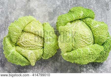 Savoy Cabbage From Organic Grower Farm. Gray Background. Top View
