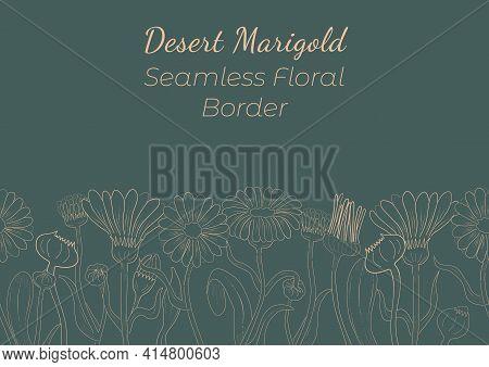Seamless Border Made With Hand Drawn Marigold Arranged Horizontally. Desert Marigold Branches, Flowe
