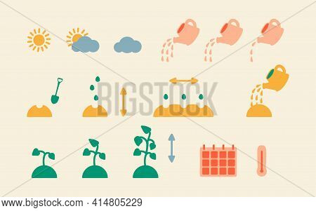 Step-by-step Instructions For Planting Plant And Flower Seeds. Vector Icons Of Planting And Seed Gro