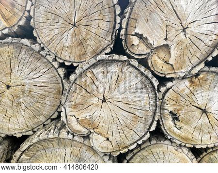 Pile Of Cut Trees, Firewood Stack, Tree Pattern. Rings Of Firewood Tree, Close Up View.