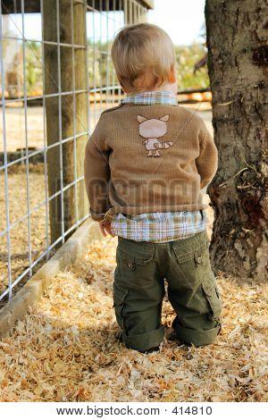 Toddler At The Farm