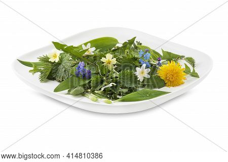 Healthy Spring Plants For Food Ingredients. Dandelion, Wild Garlic, Flowers And Nettle Isolated On W