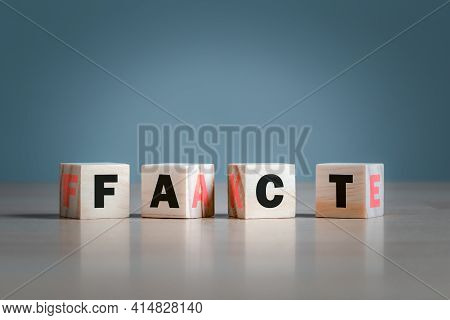 Fact Or Fake Concept, Wooden Block Form The Words Fact And Fake, April Fools Day.