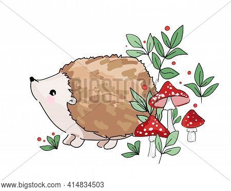 Hand Drawn Sketch Cute Baby Hedgehog And Mushrooms. Woodland Design Print For T-shirt. Vector Sketch